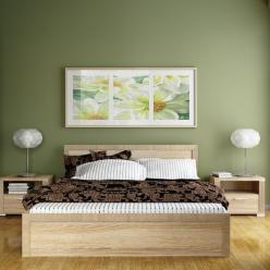 Спальня Остин, дуб сонома (Анрэкс)