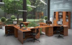 Комплект офисной мебели Эдем К1 (Эдем)