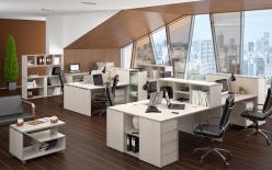 Комплект офисной мебели Вита-1 К2 (Эдем)
